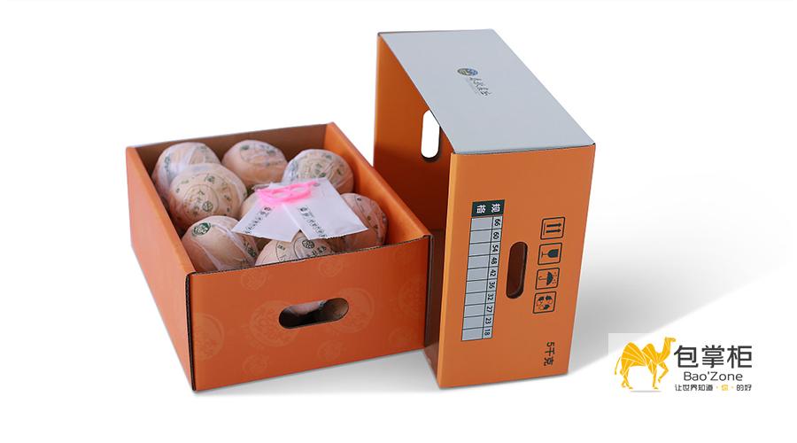 橙子包装设计